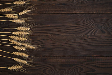 Wheat ears on a dark wooden surface. Top view