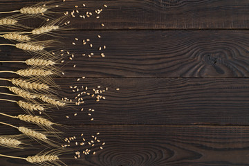 Wheat ears and grains on a dark wooden surface