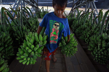 A boy wearing a t-shirt with a picture of South Korean singer PSY carries bananas at a jetty on the Yangon river bank