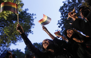Gay rights activists wave flags as they attend protest against a verdict by the Supreme Court in New Delhi