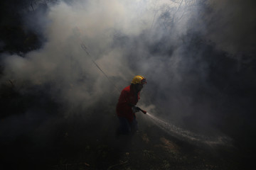 A firefighter tries to extinguish a forest fire in Adsamu village, near Vouzela