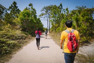 Tourist walking in forest Phu Kradung, Thailand.