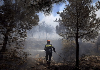 Firefighter sprays water to extinguish a forest fire in an Athens neighborhood