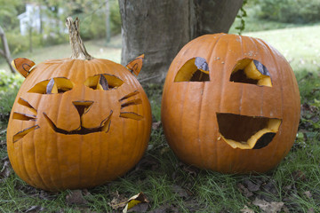 Two Colorful Jack-o-Lanterns With Personality