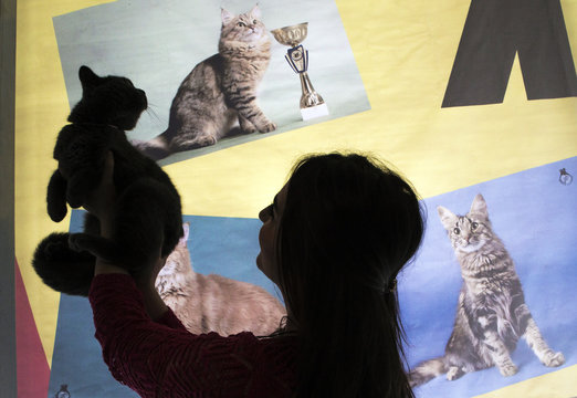 An owner holding her cat is silhouetted against a banner during a local cat exhibition in Almaty
