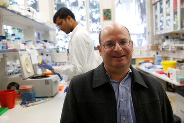 Guy Kol, Founder & VP of R&D of NRGene, an Israeli genomic big data company, poses for a picture in a laboratory in Rehovot, Israel