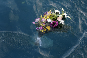 Flowers in memory of victims of the March 11, 2011 earthquake and tsunami are seen in the sea at an area which was affected by the disaster in Ofunato