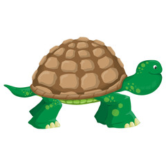 Isolated illustration of a land tortoise