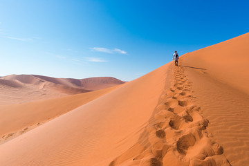 Tourist walking on the scenic dunes of Sossusvlei, Namib desert, Namib Naukluft National Park, Namibia. Afternoon light. Adventure and exploration in Africa. Wall mural