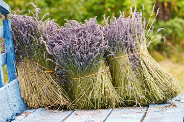 Bunches of dried lavender on a wooden cart.