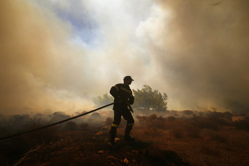 A Greek firefighter carries a hose as a forest fire rages in Marathon near Athens