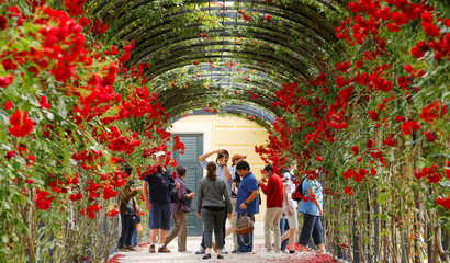 Tourists pose for photographs at the rose tunnel in the park of Schoenbrun palace in Vienna