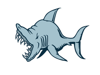 shark cartoon character. Vector Illustration.