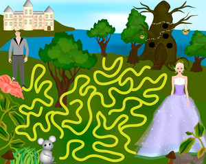Colorful maze for children - Help the prince find the princess