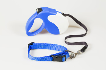 Blue roulette tape for dogs with blue collar