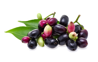 Jambolan plum or Java plum on white background
