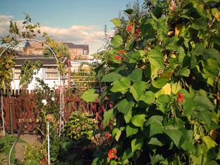 Garten dig_0208