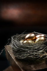Gold Pension Nest