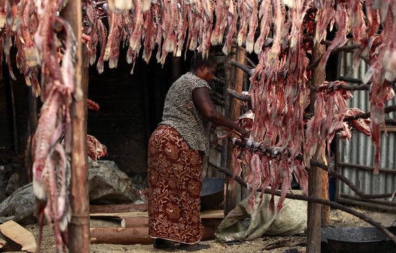 """A fish trader dries fish skeletons on wooden poles outside her stall at the Obunga """"mgongo-wazi"""" fish frying market in Kisumu"""