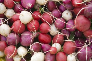 Red and White Organic Radishes