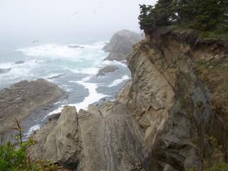 Shore Rocks A
