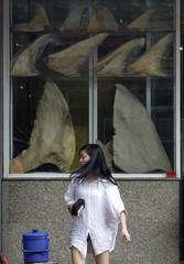 A woman walks past dried shark fins on display at a restaurant in Bangkok