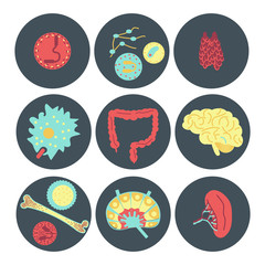 immune system icon set