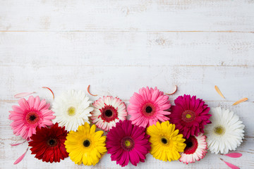 Colorful gerbera flowers White wooden background.