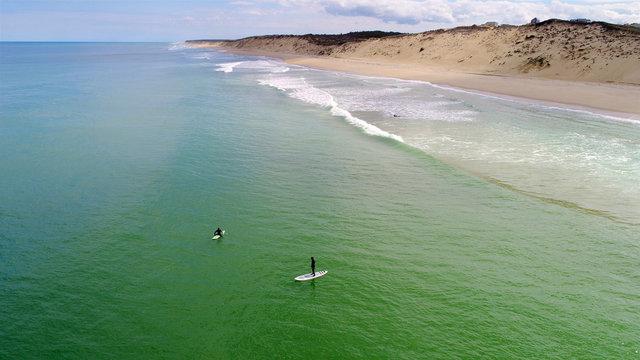 Cape Cod Paddleboard Surfers