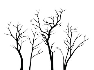 Set of black vector tree branches silhouettes isolated on white background