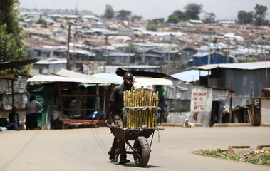 A trader pushes wheelbarrow loaded with sugar-cane for sale along a street in Kibera slum