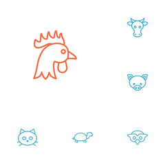 Set Of 6 Brute Outline Icons Set.Collection Of Turtle, Cat, Cock And Other Elements.