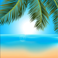Tropical sunrise with palm trees background