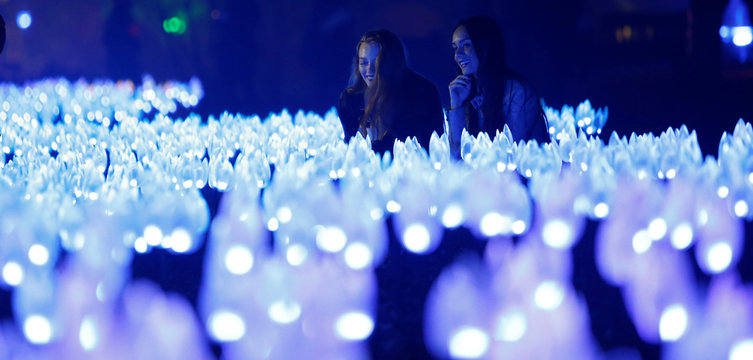 """Two girls look at """"Flower Power"""" which is part of the exhibit """"Enchanted: Forest of Light"""" at Descanso Gardens in La Canada Flintridge"""