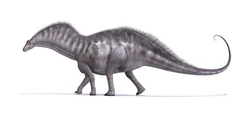 Amargusaurus Dinosaur