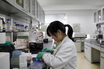 File photo of a researcher preparing medicine at a laboratory in Nanjing University in Nanjing