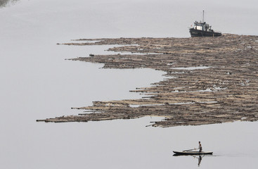A North Korean man rows a boat past logs, which were tied together and transported by boats on the Yalu River near the North Korean city of Hyesan