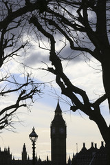 The Houses of Parliament are silhouetted behind trees by the winter sunlight in London
