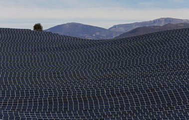 A general view shows solar panels to produce renewable energy at the photovoltaic park in Les Mees, in the department of Alpes-de-Haute-Provence