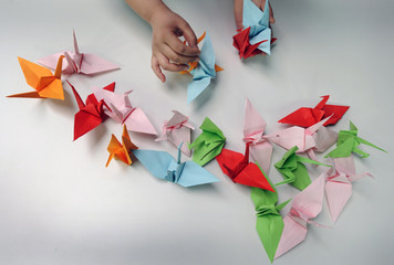 A helper lays paper cranes on a table during a origami session called Senbazuru in favour of disaster victims in Japan in the Ahondiga cultural centre in Bilbao.