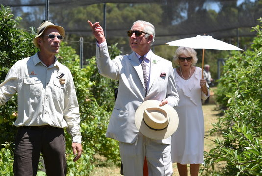 Britain's Prince Charles and Camilla the Duchess of Cornwall walk tour Oranje Tractor Wines with owner Murray Gomm in Albany, Western Australia