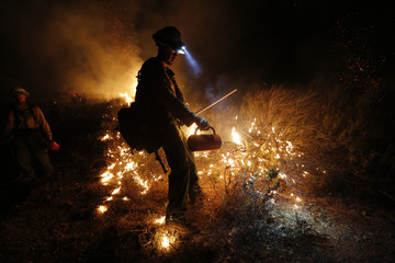 A firefighter uses a drip torch to build a backfire to control the Springs Fire near Newbury Park, California