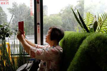 A passenger takes photo inside a plant-filled bus, a special route that runs for 5 days, featuring the concept of integrating more green space into cities, in Taipei , Taiwan