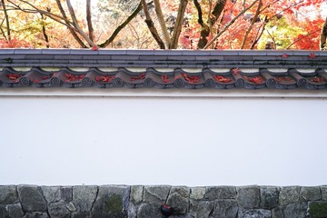 Japan Wall with old tiled roof with maple tree , red maple leaf wallpaper.