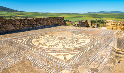 Mosaic in House of Orpheus in ruins ancient city Volubilis ,Morocco