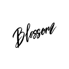 Blossom spring concept lettering