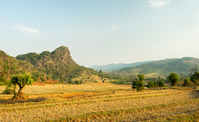 Kalaw Rural Landscape. Farming Landscape near Kalaw, Myanmar. Picture taken during a trekking from Kalaw to Inle Lake.