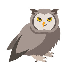 Cute smiling owl vector cartoon illustration. Wild zoo bird icon. Shaggy adult predator. Isolated on white. Forest animal childish character. Simple flat design element