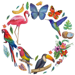 Tropical garden Birds, butterflies, parrots, flowers, fruits, palms Toucan Flamingo Сockatoo Hummingbird Hand drawn watercolor images, icons Tropical summer vacation