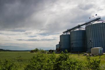 Silos on the field. Grain Storage Bins